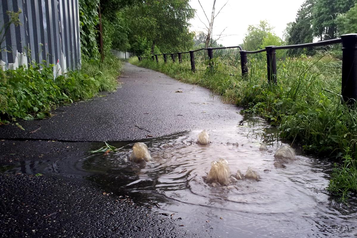 Wasser satt